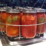 a few green tomatoes