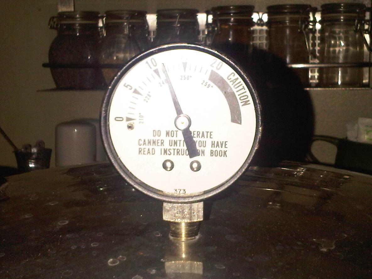 Pressure canning gauge